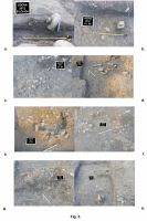 Chronicle of the Archaeological Excavations in Romania, 2012 Campaign. Report no. 13, Câmpulung, Jidova (Jidava)<br /><a href='http://foto.cimec.ro/cronica/2012/013-CAMPULUNG-AG-Jidova/Jidova-5.jpg' target=_blank>Display the same picture in a new window</a>