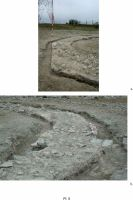 Chronicle of the Archaeological Excavations in Romania, 2012 Campaign. Report no. 28, Isaccea, La Pontonul Vechi (Cetate, Eski-kale).<br /> Sector planse-IMDA.<br /><a href='http://foto.cimec.ro/cronica/2012/028-ISACCEA-TL-Noviodunum/pl-5.jpg' target=_blank>Display the same picture in a new window</a>