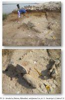 Cronica Cercetărilor Arheologice din România, Campania 2012. Raportul nr. 42, Năvodari, La Ostrov (Lacul Taşaul)<br /><a href='http://foto.cimec.ro/cronica/2012/042-NAVODARI-CT-Insula-La-Ostrov/navodari-pl-1-7-page-5.jpg' target=_blank>Priveşte aceeaşi imagine într-o fereastră nouă</a>