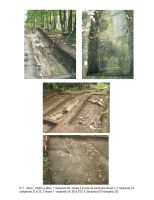 Chronicle of the Archaeological Excavations in Romania, 2012 Campaign. Report no. 68, Târcov, La piatra cu lilieci<br /><a href='http://foto.cimec.ro/cronica/2012/068-TARCOV-BZ-Piatra-cu-Lilieci/02-tarcov-2012-cronica2013-planse.jpg' target=_blank>Display the same picture in a new window</a>