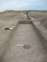 Chronicle of the Archaeological Excavations in Romania, 2012 Campaign. Report no. 75, Vlădeni, Coasta Belciugului<br /><a href='http://foto.cimec.ro/cronica/2012/075-VLADENI-IL-Popina-Blagodeasca/fig-1.JPG' target=_blank>Display the same picture in a new window</a>