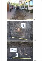 Chronicle of the Archaeological Excavations in Romania, 2012 Campaign. Report no. 103, Şimleu Silvaniei<br /><a href='http://foto.cimec.ro/cronica/2012/103-SIMLEU-SILVANIEI-SJ-str-Garofitei/3-transfer-ro-04apr-702574.jpg' target=_blank>Display the same picture in a new window</a>