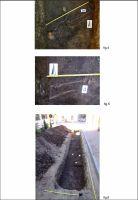 Cronica Cercetărilor Arheologice din România, Campania 2012. Raportul nr. 103, Şimleu Silvaniei<br /><a href='http://foto.cimec.ro/cronica/2012/103-SIMLEU-SILVANIEI-SJ-str-Garofitei/4-transfer-ro-04apr-d39b46.jpg' target=_blank>Priveşte aceeaşi imagine într-o fereastră nouă</a>