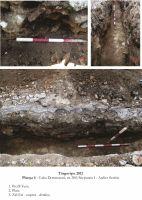 Chronicle of the Archaeological Excavations in Romania, 2012 Campaign. Report no. 105, Târgovişte, Biserica Saşilor (Sfânta Maria)<br /><a href='http://foto.cimec.ro/cronica/2012/105-TARGOVISTE-DB-Orasul-medieval/plansa-4.jpg' target=_blank>Display the same picture in a new window</a>