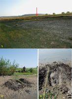 Cronica Cercetărilor Arheologice din România, Campania 2012. Raportul nr. 113.2, Tăcuta, Dealul Miclea (Paic)<br /><a href='http://foto.cimec.ro/cronica/2012/113B-TACUTA-VS/fig-6-tacuta-periegheze.jpg' target=_blank>Priveşte aceeaşi imagine într-o fereastră nouă</a>