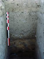 Chronicle of the Archaeological Excavations in Romania, 2014 Campaign. Report no. 40, Hârşova, Tell<br /><a href='http://foto.cimec.ro/cronica/2014/040-Harsova-tell/hva-s-2est-7-08-2014-profil-vest.JPG' target=_blank>Display the same picture in a new window</a>