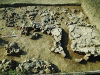 Chronicle of the Archaeological Excavations in Romania, 2014 Campaign. Report no. 59, Pietrele, Gorgana<br /><a href='http://foto.cimec.ro/cronica/2014/059-Pietrele-Gorgana/fig-7.JPG' target=_blank>Display the same picture in a new window</a>