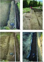 Chronicle of the Archaeological Excavations in Romania, 2014 Campaign. Report no. 74, Păuleni-Ciuc, Dâmbul Cetăţii (Dealul Cetăţii, Vardomb).<br /> Sector album2.<br /><a href='http://foto.cimec.ro/cronica/2014/074-Soimeni/figura-01.JPG' target=_blank>Display the same picture in a new window</a>