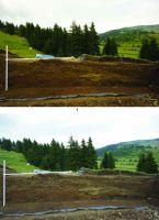 Chronicle of the Archaeological Excavations in Romania, 2014 Campaign. Report no. 74, Păuleni-Ciuc, Dâmbul Cetăţii (Dealul Cetăţii, Vardomb).<br /> Sector album2.<br /><a href='http://foto.cimec.ro/cronica/2014/074-Soimeni/figura-02.JPG' target=_blank>Display the same picture in a new window</a>
