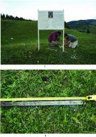 Chronicle of the Archaeological Excavations in Romania, 2014 Campaign. Report no. 74, Păuleni-Ciuc, Dâmbul Cetăţii (Dealul Cetăţii, Vardomb).<br /> Sector album2.<br /><a href='http://foto.cimec.ro/cronica/2014/074-Soimeni/figura-03.JPG' target=_blank>Display the same picture in a new window</a>
