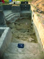 Chronicle of the Archaeological Excavations in Romania, 2014 Campaign. Report no. 89, Vlădeni, Popina Blagodeasca<br /><a href='http://foto.cimec.ro/cronica/2014/089-Vladeni-Popina-Blagodeasca/fig-11.JPG' target=_blank>Display the same picture in a new window</a>
