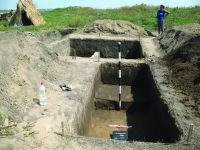 Chronicle of the Archaeological Excavations in Romania, 2014 Campaign. Report no. 89, Vlădeni, Popina Blagodeasca<br /><a href='http://foto.cimec.ro/cronica/2014/089-Vladeni-Popina-Blagodeasca/fig-3.JPG' target=_blank>Display the same picture in a new window</a>