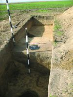 Chronicle of the Archaeological Excavations in Romania, 2014 Campaign. Report no. 89, Vlădeni, Popina Blagodeasca<br /><a href='http://foto.cimec.ro/cronica/2014/089-Vladeni-Popina-Blagodeasca/fig-5.JPG' target=_blank>Display the same picture in a new window</a>