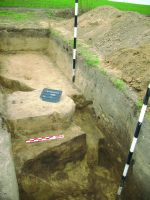 Chronicle of the Archaeological Excavations in Romania, 2014 Campaign. Report no. 89, Vlădeni, Popina Blagodeasca<br /><a href='http://foto.cimec.ro/cronica/2014/089-Vladeni-Popina-Blagodeasca/fig-6.JPG' target=_blank>Display the same picture in a new window</a>