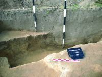 Chronicle of the Archaeological Excavations in Romania, 2014 Campaign. Report no. 89, Vlădeni, Popina Blagodeasca<br /><a href='http://foto.cimec.ro/cronica/2014/089-Vladeni-Popina-Blagodeasca/fig-8.JPG' target=_blank>Display the same picture in a new window</a>
