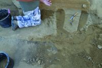 Chronicle of the Archaeological Excavations in Romania, 2014 Campaign. Report no. 90, Mitoc, Malul Galben<br /><a href='http://foto.cimec.ro/cronica/2014/090-Mitoc-Malu-Galben/mitoc-rapport-2014-fig-6.JPG' target=_blank>Display the same picture in a new window</a>