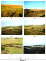 Chronicle of the Archaeological Excavations in Romania, 2014 Campaign. Report no. 100, Dumbrava, Sit. nr. 3 - Dumbrava 2<br /><a href='http://foto.cimec.ro/cronica/2014/100-Autostrada-Sebes-Turda/km60-550-60-700-sit3-03.jpg' target=_blank>Display the same picture in a new window</a>