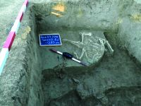 Chronicle of the Archaeological Excavations in Romania, 2014 Campaign. Report no. 119, Fulgeriş, La Trei Cireşi (Dealul Fulgeriş)<br /><a href='http://foto.cimec.ro/cronica/2014/119-Fulgeris/fig-12-b.JPG' target=_blank>Display the same picture in a new window</a>