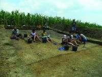 Chronicle of the Archaeological Excavations in Romania, 2014 Campaign. Report no. 119, Fulgeriş, La Trei Cireşi (Dealul Fulgeriş)<br /><a href='http://foto.cimec.ro/cronica/2014/119-Fulgeris/fig-4-a.JPG' target=_blank>Display the same picture in a new window</a>