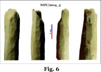 Chronicle of the Archaeological Excavations in Romania, 2014 Campaign. Report no. 124, Isaccea, La Pontonul Vechi (Cetate, Eski-kale).<br /> Sector planse-IMDA.<br /><a href='http://foto.cimec.ro/cronica/2014/124-Isaccea/nov-fig-6.jpg' target=_blank>Display the same picture in a new window</a>