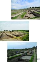 Chronicle of the Archaeological Excavations in Romania, 2014 Campaign. Report no. 124, Isaccea, La Pontonul Vechi (Cetate, Eski-kale).<br /> Sector planse-IMDA.<br /><a href='http://foto.cimec.ro/cronica/2014/124-Isaccea/pl-2-tpf.jpg' target=_blank>Display the same picture in a new window</a>