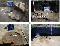 Chronicle of the Archaeological Excavations in Romania, 2014 Campaign. Report no. 128, Negrileşti, Şcoala Generală (La Punte, Pin, Curtea Şcolii).<br /> Sector plansa IMDA.<br /><a href='http://foto.cimec.ro/cronica/2014/128-Negrilesti/plansa-15.jpg' target=_blank>Display the same picture in a new window</a>