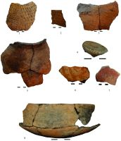 Chronicle of the Archaeological Excavations in Romania, 2014 Campaign. Report no. 128, Negrileşti, Şcoala Generală (La Punte, Pin, Curtea Şcolii).<br /> Sector plansa IMDA.<br /><a href='http://foto.cimec.ro/cronica/2014/128-Negrilesti/plansa-24-neolitic.jpg' target=_blank>Display the same picture in a new window</a>