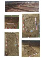 Chronicle of the Archaeological Excavations in Romania, 2014 Campaign. Report no. 138, Ploieşti, Gara de Vest<br /><a href='http://foto.cimec.ro/cronica/2014/138-Ploiesti/ploiesti-plansa-1.jpg' target=_blank>Display the same picture in a new window</a>