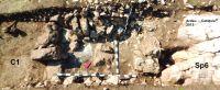 Cronica Cercetărilor Arheologice din România, Campania 2015. Raportul nr. 3, Ardeu, Cetăţuie (Cetăţeaua).<br /> Sectorul ardeu.<br /><a href='http://foto.cimec.ro/cronica/2015/003-Ardeu/fig1.jpg' target=_blank>Priveşte aceeaşi imagine într-o fereastră nouă</a>