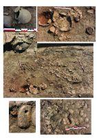 Chronicle of the Archaeological Excavations in Romania, 2015 Campaign. Report no. 58, Urlaţi, La Câmp (La Islaz)<br /><a href='http://foto.cimec.ro/cronica/2015/058-Urlati/plansa-2.jpg' target=_blank>Display the same picture in a new window</a>