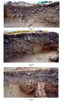 Chronicle of the Archaeological Excavations in Romania, 2015 Campaign. Report no. 80, Capidava, Cetate.<br /> Sector 06-ilustratie sector X.<br /><a href='http://foto.cimec.ro/cronica/2015/080-Capidava/planse-belvedere-cronica-3.jpg' target=_blank>Display the same picture in a new window</a>