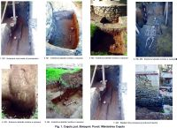 Chronicle of the Archaeological Excavations in Romania, 2015 Campaign. Report no. 89, Coşula<br /><a href='http://foto.cimec.ro/cronica/2015/089-Cosula/fig-1.jpg' target=_blank>Display the same picture in a new window</a>