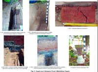 Chronicle of the Archaeological Excavations in Romania, 2015 Campaign. Report no. 89, Coşula<br /><a href='http://foto.cimec.ro/cronica/2015/089-Cosula/fig-2.jpg' target=_blank>Display the same picture in a new window</a>