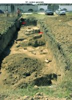 Chronicle of the Archaeological Excavations in Romania, 2015 Campaign. Report no. 94, Mangalia<br /><a href='http://foto.cimec.ro/cronica/2015/094-Mangalia/7.jpg' target=_blank>Display the same picture in a new window</a>