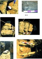 Chronicle of the Archaeological Excavations in Romania, 2015 Campaign. Report no. 97, Mangalia<br /><a href='http://foto.cimec.ro/cronica/2015/097-Mangalia/pl1.jpg' target=_blank>Display the same picture in a new window</a>