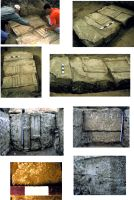 Chronicle of the Archaeological Excavations in Romania, 2015 Campaign. Report no. 97, Mangalia<br /><a href='http://foto.cimec.ro/cronica/2015/097-Mangalia/pl4.jpg' target=_blank>Display the same picture in a new window</a>