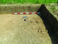 Chronicle of the Archaeological Excavations in Romania, 2015 Campaign. Report no. 135, Fulgeriş, La Trei Cireşi (Dealul Fulgeriş)<br /><a href='http://foto.cimec.ro/cronica/2015/135-Fulgeris/fig-3b.JPG' target=_blank>Display the same picture in a new window</a>