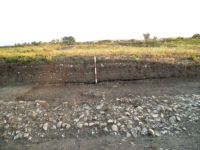 Chronicle of the Archaeological Excavations in Romania, 2015 Campaign. Report no. 136, Răcarii De Jos<br /><a href='http://foto.cimec.ro/cronica/2015/136-Racarii-de-Jos-Castrul/DSCF4540.JPG' target=_blank>Display the same picture in a new window</a>