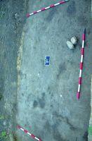Cronica Cercetărilor Arheologice din România, Campania 2016. Raportul nr. 12, Vadu Săpat, Puţul Tătarului (Budureasca 4 Nord)<br /><a href='http://foto.cimec.ro/cronica/2016/012-Budureasca-PH-Punct-Budureasca-4-Putul-Tatarului/plansa-v-4-budureasca.jpg' target=_blank>Priveşte aceeaşi imagine într-o fereastră nouă</a>