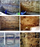 Chronicle of the Archaeological Excavations in Romania, 2016 Campaign. Report no. 18, Cheia, Vatra satului.<br /> Sector ILUSTRATIE-CHEIA-2017.<br /><a href='http://foto.cimec.ro/cronica/2016/018-Cheia-CT-Punct-Vatra-Satului-Pestera-Craniilor/pl-7.jpg' target=_blank>Display the same picture in a new window</a>