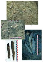 Chronicle of the Archaeological Excavations in Romania, 2016 Campaign. Report no. 83, Urlaţi, La Câmp (La Islaz)<br /><a href='http://foto.cimec.ro/cronica/2016/083-Urlati-PH/plansa-2.jpg' target=_blank>Display the same picture in a new window</a>