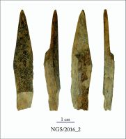 Chronicle of the Archaeological Excavations in Romania, 2016 Campaign. Report no. 109, Negrileşti, Şcoala Generală (La Punte, Pin, Curtea Şcolii).<br /> Sector 2. Industria materiilor dure animale.<br /><a href='http://foto.cimec.ro/cronica/2016/109-Negrilesti-GL-Punct-Negrilesti-Curtea-scolii/2-Industria-materiilor-dure-animale/2.jpg' target=_blank>Display the same picture in a new window</a>