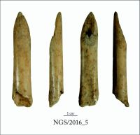 Chronicle of the Archaeological Excavations in Romania, 2016 Campaign. Report no. 109, Negrileşti, Şcoala Generală (La Punte, Pin, Curtea Şcolii).<br /> Sector 2. Industria materiilor dure animale.<br /><a href='http://foto.cimec.ro/cronica/2016/109-Negrilesti-GL-Punct-Negrilesti-Curtea-scolii/2-Industria-materiilor-dure-animale/5.jpg' target=_blank>Display the same picture in a new window</a>