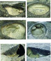 Cronica Cercetărilor Arheologice din România, Campania 2016. Raportul nr. 118, Teiuş, Situl arheologic nr. 6/ km 30+480 - 30+750<br /><a href='http://foto.cimec.ro/cronica/2016/118-Teius-AB-Punct-Sit-6/pl-i.jpg' target=_blank>Priveşte aceeaşi imagine într-o fereastră nouă</a>