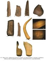 Chronicle of the Archaeological Excavations in Romania, 2017 Campaign. Report no. 22, Hârşova, Tell<br /><a href='http://foto.cimec.ro/cronica/2017/01-Cercetari-sistematice/022-Harsova-tell-piese-litice/fig-6.jpg' target=_blank>Display the same picture in a new window</a>