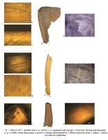 Chronicle of the Archaeological Excavations in Romania, 2017 Campaign. Report no. 22, Hârşova, Tell<br /><a href='http://foto.cimec.ro/cronica/2017/01-Cercetari-sistematice/022-Harsova-tell-piese-litice/fig-9.jpg' target=_blank>Display the same picture in a new window</a>