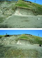 Chronicle of the Archaeological Excavations in Romania, 2017 Campaign. Report no. 27, Isaccea, La Pontonul Vechi (Cetate, Eski-kale).<br /> Sector planse-IMDA.<br /><a href='http://foto.cimec.ro/cronica/2017/01-Cercetari-sistematice/027-Curtina-i/pl-11.jpg' target=_blank>Display the same picture in a new window</a>