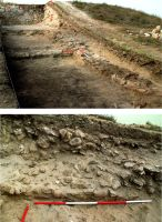 Chronicle of the Archaeological Excavations in Romania, 2017 Campaign. Report no. 35, Jurilovca, Capul Dolojman.<br /> Sector ilustratie.<br /><a href='http://foto.cimec.ro/cronica/2017/01-Cercetari-sistematice/035-Jurilovca-jud-Tulcea-Argamum-23-sist/ilustratie/pl-8-argamum-sector-incinta-nord.jpg' target=_blank>Display the same picture in a new window</a>