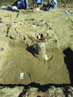 Cronica Cercetărilor Arheologice din România, Campania 2017. Raportul nr. 58, Scânteia, La Nuci (Dealul Bodeştilor)<br /><a href='http://foto.cimec.ro/cronica/2017/01-Cercetari-sistematice/058-Scanteia-jud-Iasi/fig-10-scanteia-vatra-incaperea-b-stela-2-in-situ.jpg' target=_blank>Priveşte aceeaşi imagine într-o fereastră nouă</a>
