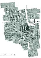 Cronica Cercetărilor Arheologice din România, Campania 2017. Raportul nr. 59, Sfârleanca, La Cetate<br /><a href='http://foto.cimec.ro/cronica/2017/01-Cercetari-sistematice/059-Sfarleanca-Dumbraveni-CastrulMalaiesti/MAL01.jpg' target=_blank>Priveşte aceeaşi imagine într-o fereastră nouă</a>